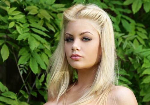 Riley Steele Blog