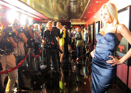Riley Steele Piranha 3D