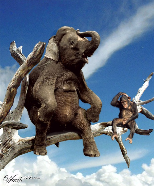 elephant and monkeys in a tree