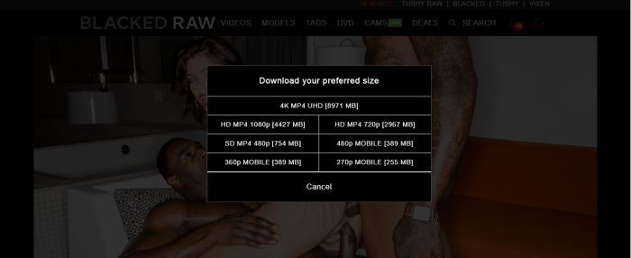 the download options