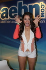 Allie Haze 4-4